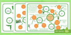 St. Patrick's Day Differentiated Concept Maps Arabic Translation