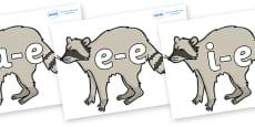 Modifying E Letters on Raccoons