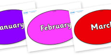 Months of the Year on Ovals