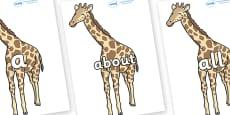 100 High Frequency Words on Giraffe