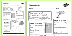Homophones Activity Sheet