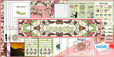 PlanIt - Art LKS2 - Insects Unit Additional Resources