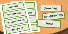 Year 4 Living Things and their Habitats Scientific Vocabulary Cards