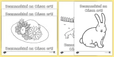 * NEW * Happy Easter Colouring Pages Gaeilge