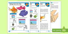 * NEW * KS1 How to Look After a Fish Differentiated Fact File