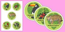 Rainforest Explorer Role Play Badges