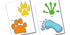Animal Footprint Cut Outs