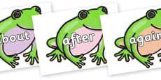 KS1 Keywords on Green Tree Frog