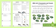 Year 3 Grammar: Using 'A' or 'An' Learning From Home Activity Booklet