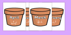 Months of the Year on Plant Pots Urdu