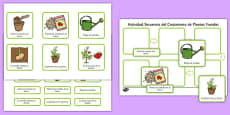 Plant Growth Sequencing Activity Spanish