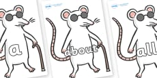 100 High Frequency Words on Blind Mice
