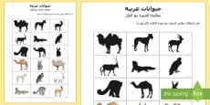 بطاقات مطابقة الحيوان مع الصورة الظلية