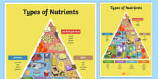 Types of Nutrients Pyramid Poster