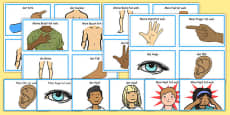 Parts of the Body Communication Cards German