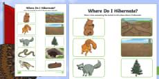 Where Do I Hibernate? Activity Sheet