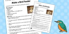 Bird Feeders Worksheet
