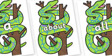 100 High Frequency Words on Boa Constrictor to Support Teaching on The Bad Tempered Ladybird
