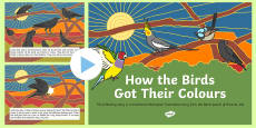 Aboriginal Dreamtime How the Birds Got Their Colours PowerPoint