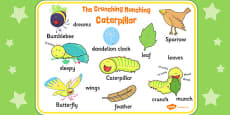 Word Mat to Support Teaching on The Crunching Munching Caterpillar