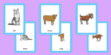 Animals and Their Young Matching Cards Polish