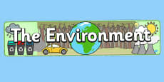 The Environment Display Banner