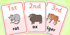 Animal Race Ordinal Numbers Flashcards