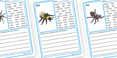 Minibeasts Description Writing Frames