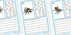 Minibeasts Description Writing Frames