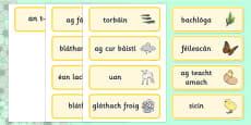 Spring Word Cards Gaeilge