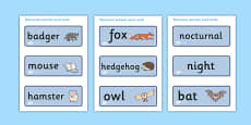 Nocturnal Animals Word Cards