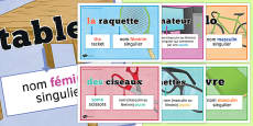 Definite and Indefinite Articles Classroom Display Posters French
