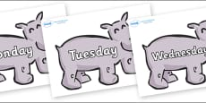 Days of the Week on Hippos