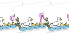 Final Letter Blends on Five Little Ducks