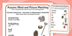 Autumn Word and Picture Matching Worksheet Polish Translation