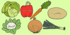 Vegetable Words on Vegetables Arabic