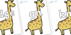 Silent Letters on Giraffes