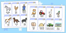 On the Farm Flash Cards Romanian Translation