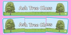 Ash Tree Themed Classroom Display Banner