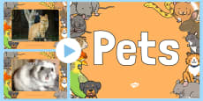 Pets Photo PowerPoint
