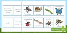Tarjetas de emparejar: Descripciones de los bichos