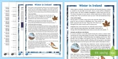 Winter in Ireland 5th and 6th Class Differentiated Reading Comprehension Activity