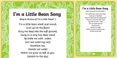 I'm a Little Bean Song Lyric Sheet (With Actions)