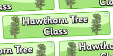 Hawthorn Themed Classroom Display Banner