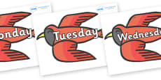 Days of the Week on Red Bird to Support Teaching on Brown Bear, Brown Bear