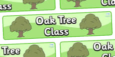 Oak Tree Themed Classroom Display Banner