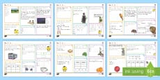 New Zealand Year 5 Spelling, Punctuation and Grammar Set 1 Activity Mats