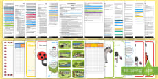EYFS Adult Input Planning and Resource Pack to Support Teaching on What the Ladybird Heard