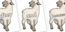 Connectives on Lamb