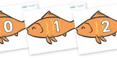 Numbers 0-100 on Goldfish